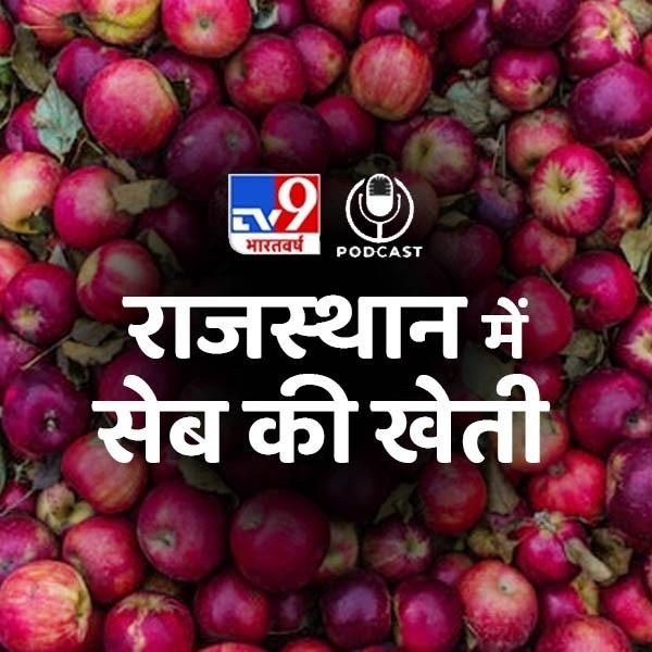 पढ़िए कहानी एक शिक्षक की जो राजस्थान में सेब उगाकर कर रहा कमाई